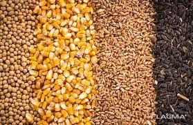 Послуги з помолу зерна