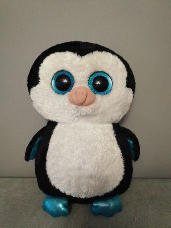 Pingwin pluszak duży