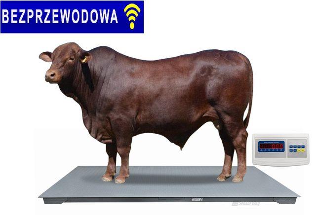 Waga INWENTARZOWA bezprzewodowa 1x2,2 3t rolnicza do bydła żywca