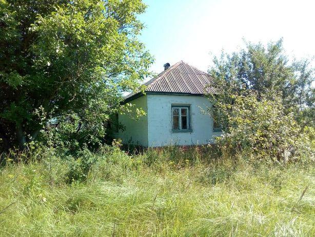 Дом с.Браница 100км от Киева. 0,44га