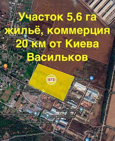 Продаж участок 5 га под жилье бизнес. Васильков, Борисов 20км от Киева