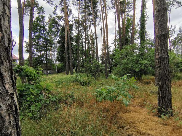 Продам 5 соток в Лесной Буче