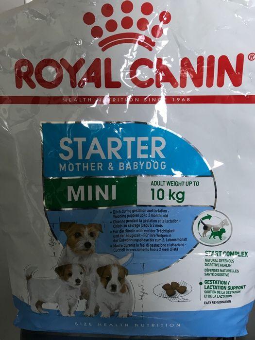 Karma Royal Canin Starter Mini 2,6kg Poznań - image 1