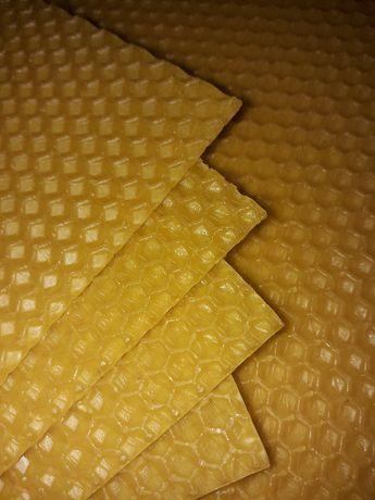 Węza pszczela wielkopolska, ule wielkopolskie, pszczoły- PRODUCENT!