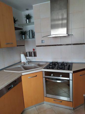 Mieszkanie po remoncie do wynajęcia od zaraz (2 pokoje), Borki
