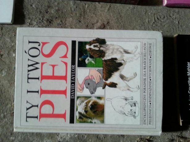 Psy. Książki o ukochanych pupilach