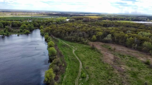 Участок 6 га между лесом и озером, 1 км до р Десна