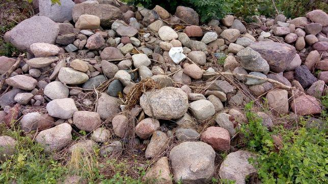 Kamień polny oddam