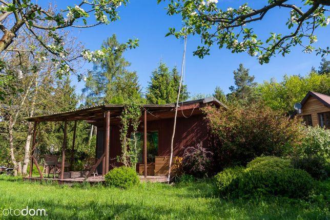 Drewniany domek w Cieksynie