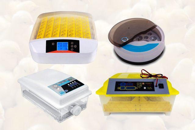 Автоматический инкубатор HHD,терморегулятор с вентилятором, інкубатор