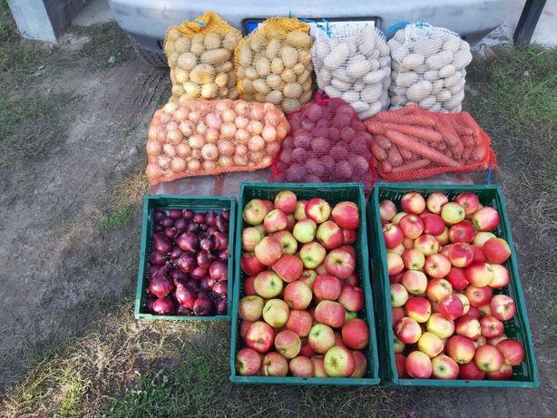 ziemniaki/warzywa
