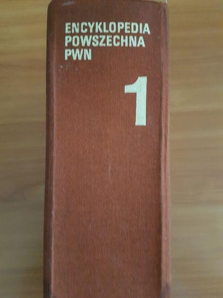 Encyklopedia Powszechna PWN - 4 cz. 1983