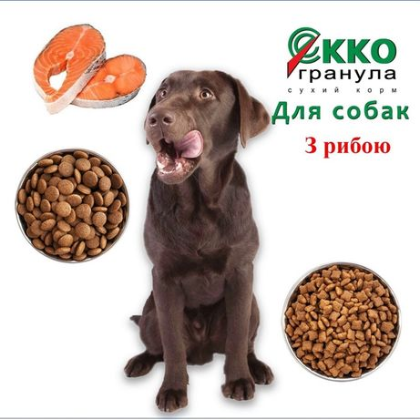 Сухий корм для дорослих собак та великих порід з рибою