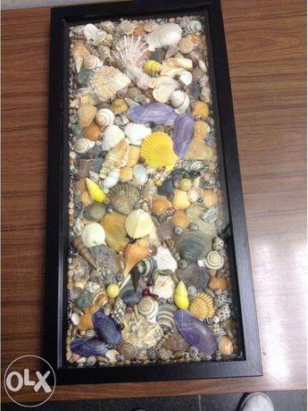 Quadro decorativo envidracado com conchas do mar