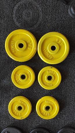 Discos / pesos de musculação / Bolachas 5 kg e 2.5kg