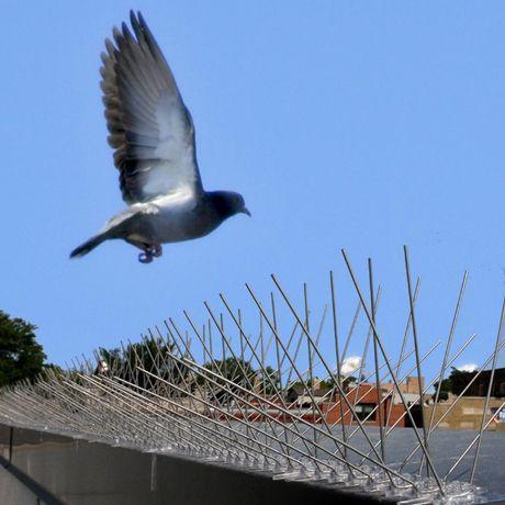 Шипы для защиты от голубей и других птиц Jacopic, 0,5м