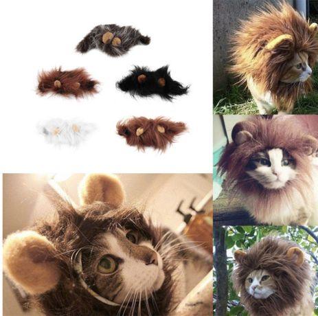 Juba de leão para gatos!