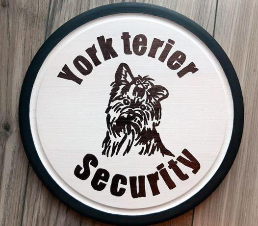 York terier tabliczka