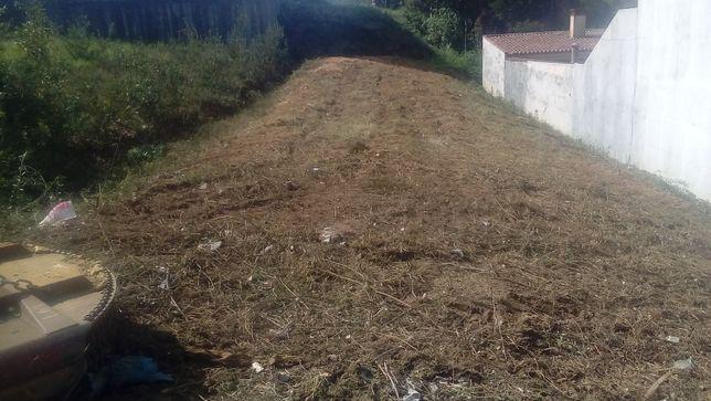 Limpeza de terrenos e abate de árvores