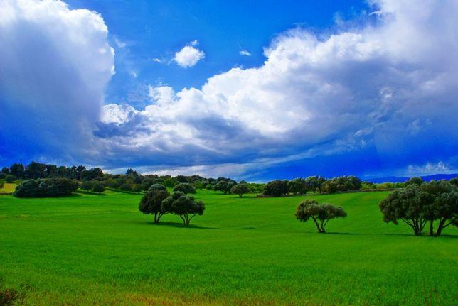 Terrenos em Mouriscas= BARATOS