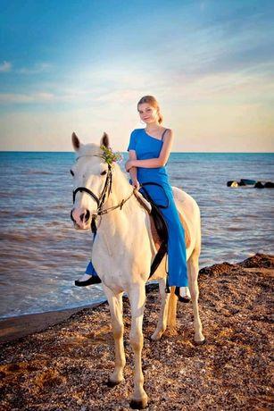 Лошади в Бердянске с. Азовское