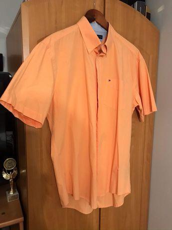 Piękna koszulka koszula TH Tommy Hilfiger