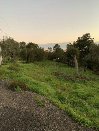 Terreno em Vale de Lobos (Sintra)
