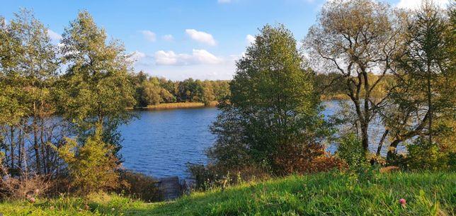 Trzy piękne działki z WZ nad samym jeziorem (z linią brzegową)
