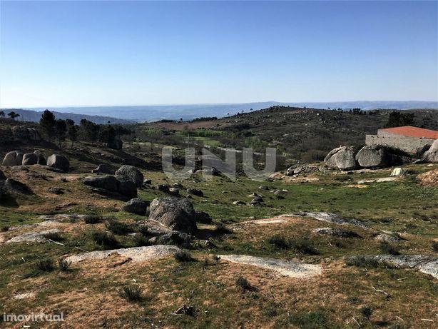 Terreno Rústico  Venda em Alvendre,Guarda