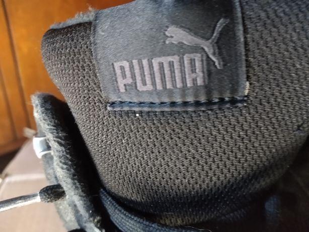 Puma sportowe 42