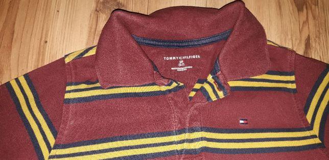 Koszulki polo , Ralph lauren.,Tommy hilifiger, lacosta