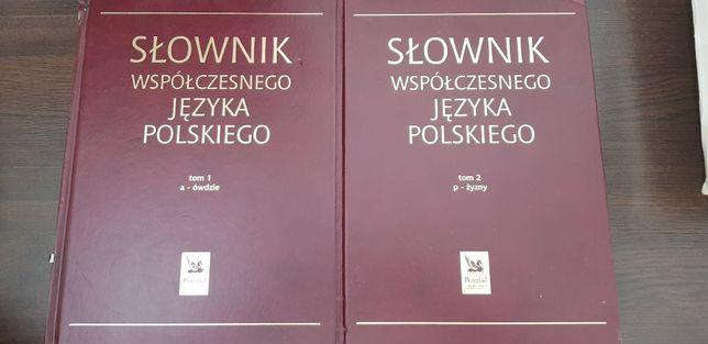 Słownik współczesnego języka polskiego 2 tomy Reader's Digest