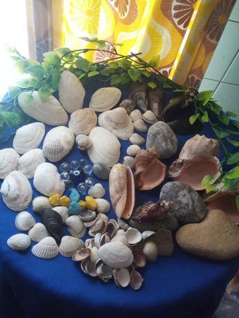 Набор:морские ракушки разные, камушки,ЗА ВСЁ .