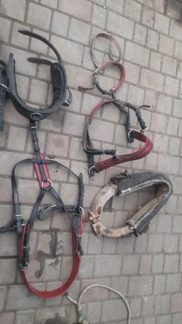 продам на пони для кареты