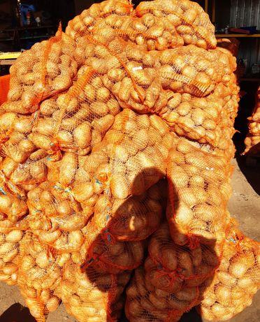 Ziemniaki od rolnika, cena za worek.z dostawa pod dom, gala lili denar