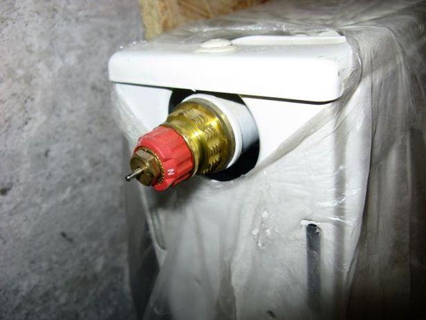 Kaloryfer Buderusa typ 22 z zaworem i głowicą termostatyczną