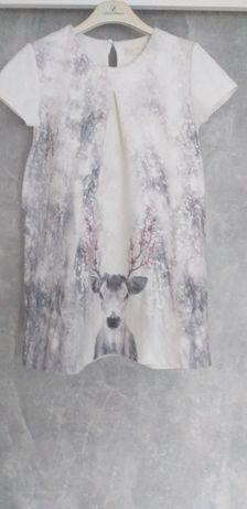 Sukienka Zara r 152