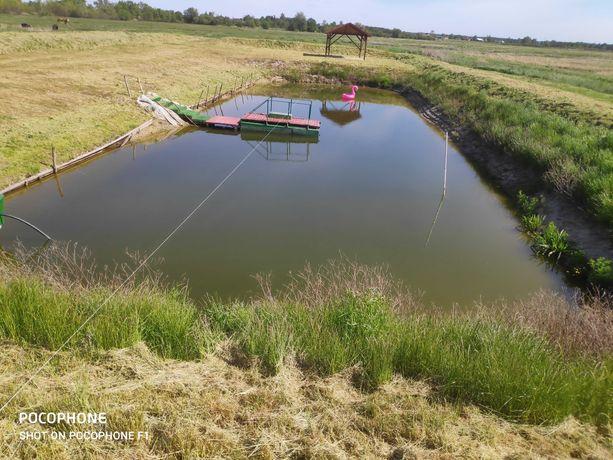Działka rolna ze zbiornikiem wodnym