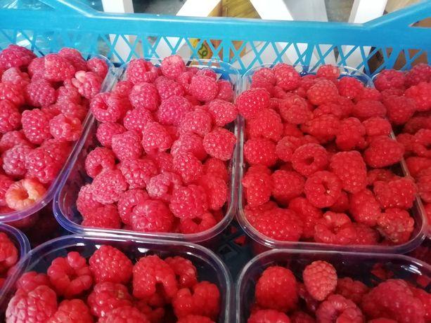 Малина, ягоди. Ягода