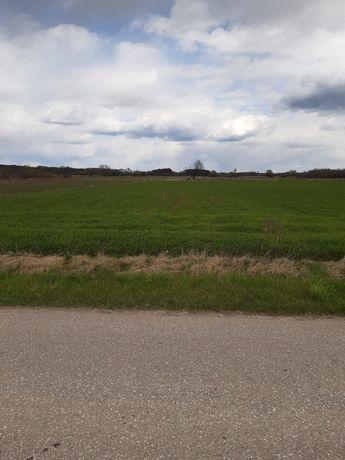 Działka rolno - budowlana +- 1000m2 Kąck