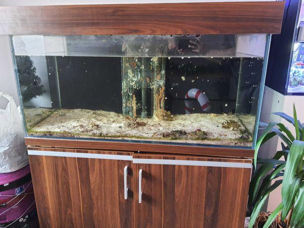 Akwarium morskie. akwarium z sumpem.