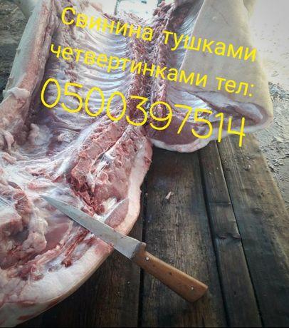 Свинина тушками четвертинками 80 гр.кг (ДОСТАВКА)
