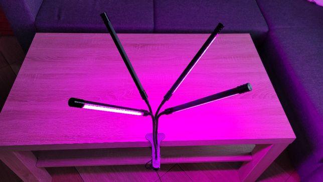 Lampa LED do wzrostu kwiatów roślin lampka