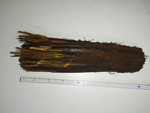 Korzeń Xaxim duży 40 cm wyjątkowy