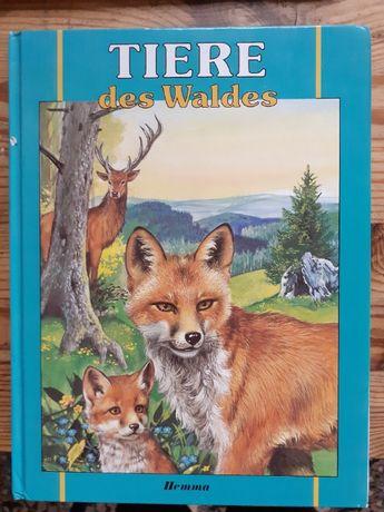 Дитячі книжки німецькою мовою. Tiere des Waldes