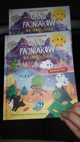 Książka Biedronka Gang Fajniaków