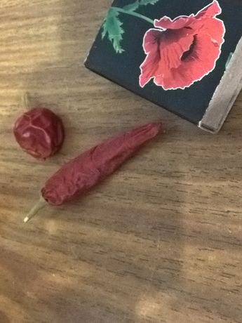 Семена комнатного перчика