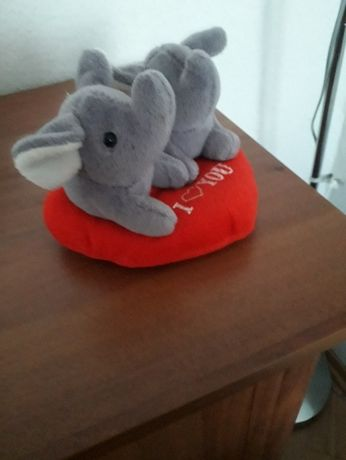 Para słoni