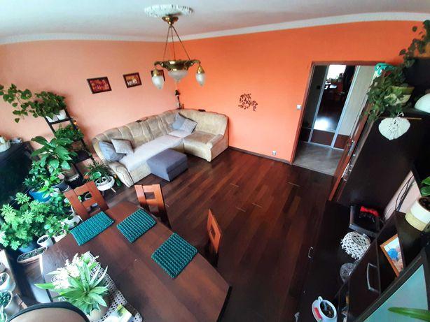 Górczyn Przestronne Mieszkanie 64,59m²