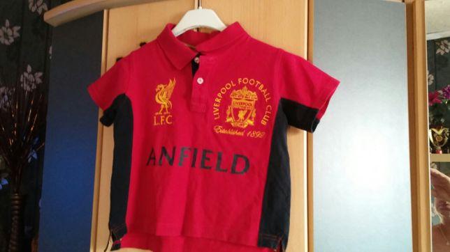Sportowa Koszulka Polo Liverpool